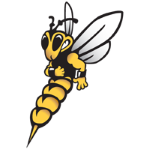 Wisconsin-Superior Yellowjackets