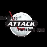 Hvidovre Attack