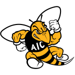 American International Yellow Jackets